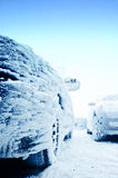 Rozen Auto am Winter Stockfotos