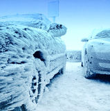 Rozen Auto am Winter Lizenzfreies Stockfoto