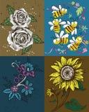 Rozen, Bijen en het Kunstwerk van de Zonnebloem Stock Afbeelding