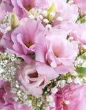 Rozen, bloemenachtergrond Royalty-vrije Stock Afbeeldingen