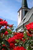 Rozen in de tuin van kerk Stock Foto