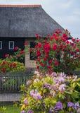 Rozen door het Nederlandse zijhuis van het land Royalty-vrije Stock Afbeelding