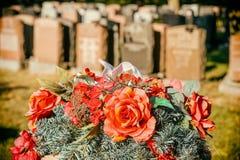 Rozen in een begraafplaats Stock Foto's