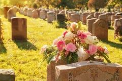 Rozen in een begraafplaats Royalty-vrije Stock Afbeelding