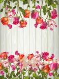 Rozen en harten op houten raad Eps 10 Royalty-vrije Stock Afbeeldingen