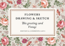 Rozen, kamille De kaart van het kaderetiket Vector illustratie Mooie barokke bloemen Tekening, gravure bloemen Royalty-vrije Stock Foto's