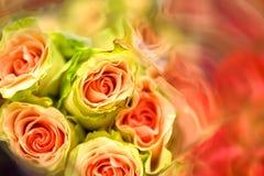 Rozen, Onscherp van Zoete kleurenrozen in textuur zacht onduidelijk beeld voor achtergrond met pastelkleur uitstekende retro stij Stock Fotografie