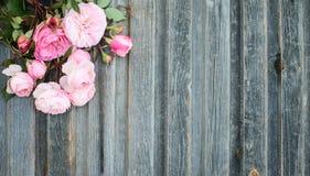 Rozen op doorstane houten retro gestileerde geweven achtergrond Romant Royalty-vrije Stock Foto's