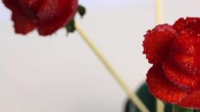 Rozen van aardbeien worden gemaakt die De aardbeien zijn gekleed op een stok, worden de bloemblaadjes gemaakt met een mes stock video
