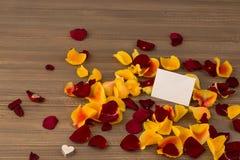 Rozen voor de dag van de valentijnskaart en de dag van de moeder Stock Foto's