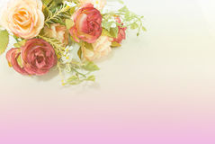Rozen in zachte kleur Royalty-vrije Stock Foto