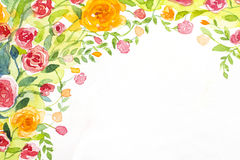 Rozenachtergrond 2 geschilderde waterverf Stock Afbeelding