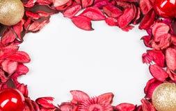 Rozenbloemblaadjes op wit geïsoleerde achtergrond Liefdemalplaatje voor de roze bloemen van de valentijnskaartendag rond Niets bi Stock Foto's