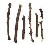 rozgałęzia się drewnianego Zdjęcia Stock