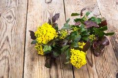 Rozgałęzia się z liśćmi i kolorów żółtych kwiatami na drewnianym tle Zdjęcie Royalty Free