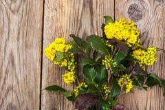 Rozgałęzia się z liśćmi i kolorów żółtych kwiatami na drewnianym tle Obraz Royalty Free