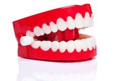rozgwarzeni zęby Zdjęcie Stock