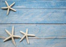 Rozgwiazda na błękitnym dennym tle zdjęcie stock