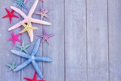 Rozgwiazda na drewnianej desce Obraz Stock