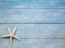 Rozgwiazda na jaskrawym błękitnym tle obrazy stock