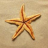 Rozgwiazda na plażowym piasku obrazy stock