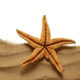 Rozgwiazda na plażowym piasku obrazy royalty free