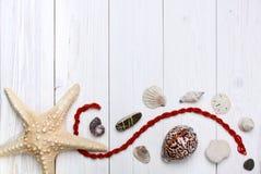 Rozgwiazda, seashells i kamienia biały drewniany tło, Zdjęcia Royalty Free