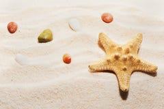 Rozgwiazdy i morza kamienie na plażowym piasku Fotografia Royalty Free