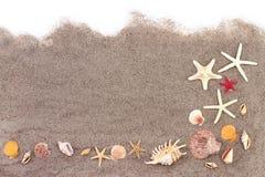 Rozgwiazdy na plażowym piasku Obraz Stock