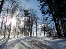 Rozjaśniać ścieżkę przez świeżego śniegu Fotografia Royalty Free