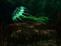 rozjarzeni jellyfish Fotografia Stock