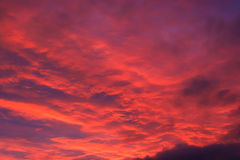 Rozjarzonych Czerwonych chmur nieba Jutrzenkowy wschód słońca Obrazy Royalty Free