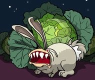 Rozjuszony królik chroni kapusty Obraz Royalty Free