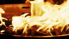 Rozlewający węgiel drzewny zapalniczki fluid w grilla ogienia w górę zwolnionego tempa, Strzelaj?cy na CZERWONEJ kamerze zbiory