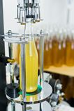 Rozlewnicza fabryka Piwna rozlewnicza linia dla przetwarza? i rozlewniczy piwo w butelki - fotografia royalty free