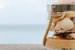 Rozmaito?? denne skorupy w szklanym s?oju i seascape na tle z kopii przestrzeni? zdjęcie royalty free