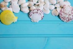 Rozmaitość dosyć wielo- colour skorupy Zdjęcie Stock