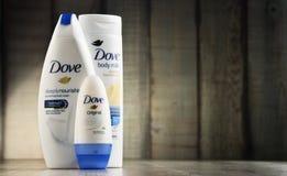 Rozmaitość gołąbka produkty wliczając ciała mleka i anty Zdjęcie Stock