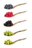 Rozmaitość jagody na drewnianych łyżkach Zdjęcia Stock