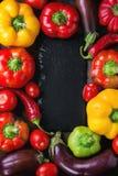 Rozmaitość kolorowi papryka pieprze Fotografia Stock
