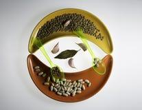Rozmaitość legumes i dwa łyżki na cereamic Zdjęcia Royalty Free