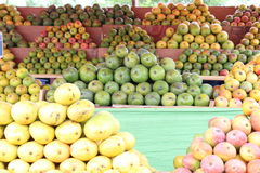 Rozmaitość mango zdjęcia royalty free