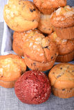 Rozmaitość muffins w koszu Fotografia Royalty Free