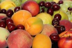 Rozmaitość owoc i jagody Zdjęcie Royalty Free