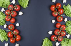 Rozmaitość surowi warzywa, kulinarny pojęcie Asortyment warzywa i ziele na popielatym kamiennym tle Różni surowi warzywa fotografia stock
