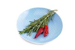 Rozmaryn gałąź dalej i dwa czerwonego chili pieprzu Fotografia Royalty Free