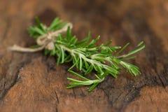 rozmarynowi ziele i Leczniczy ziele Organicznie leczniczy ziele świeży Zdjęcia Royalty Free