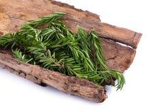 rozmarynowi ziele i Leczniczy ziele Organicznie leczniczy ziele świeży Obraz Stock