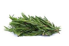rozmarynowi ziele i Leczniczy ziele Organicznie leczniczy ziele świeży Obraz Royalty Free