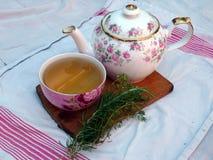Rozmaryny i tymiankowa zielarska herbata na stole Zdjęcia Stock